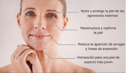 beneficios de usar aceite de oliva en la piel - 5 Beneficios De Usar Aceite De Oliva En Tu Piel