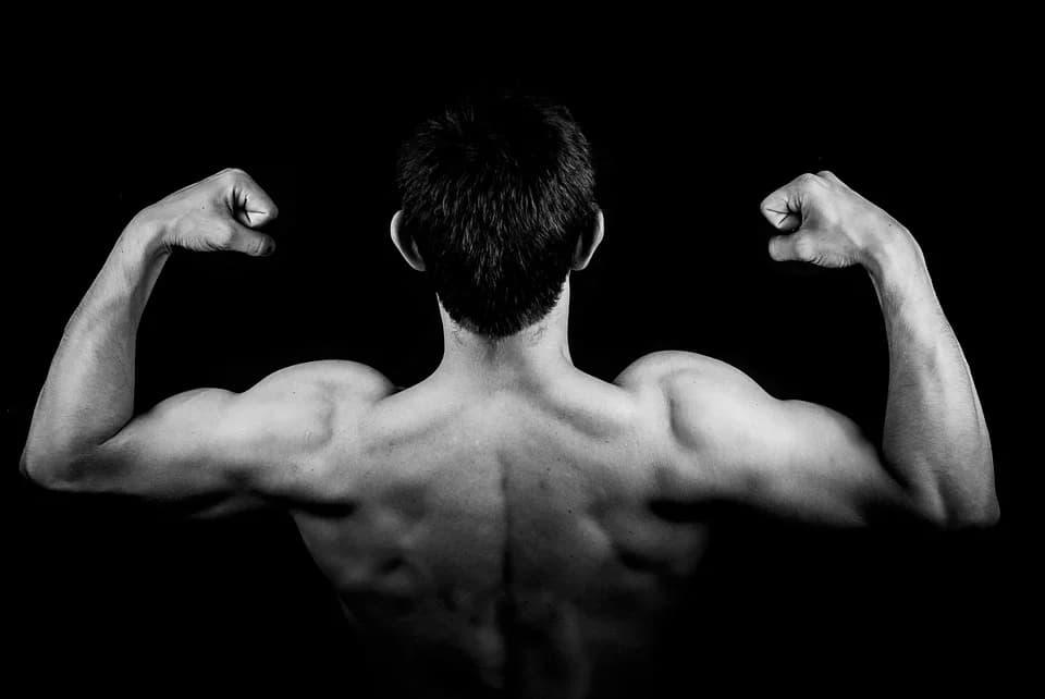 En este momento estás viendo 5 Ejercicios para ganar masa muscular