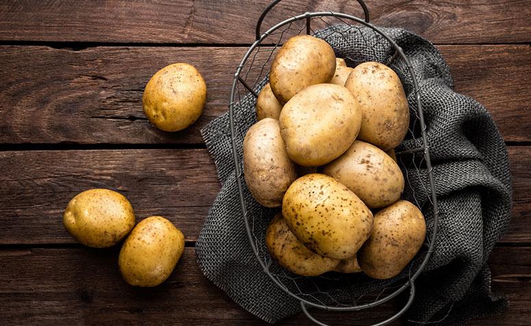 1612711983 658 Aprenda sobre la nutricion a base de plantas y sus - Aprenda sobre la nutrición a base de plantas y sus beneficios para el cuerpo.