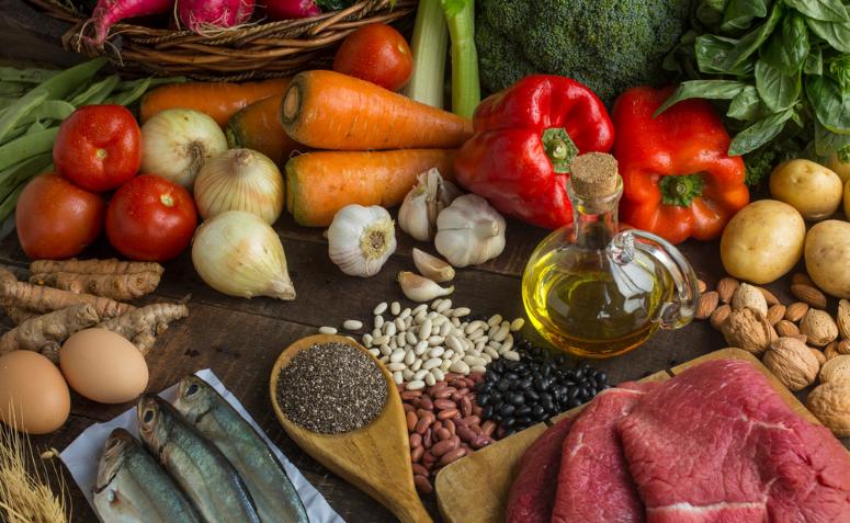 En este momento estás viendo Aprenda sobre la nutrición a base de plantas y sus beneficios para el cuerpo.